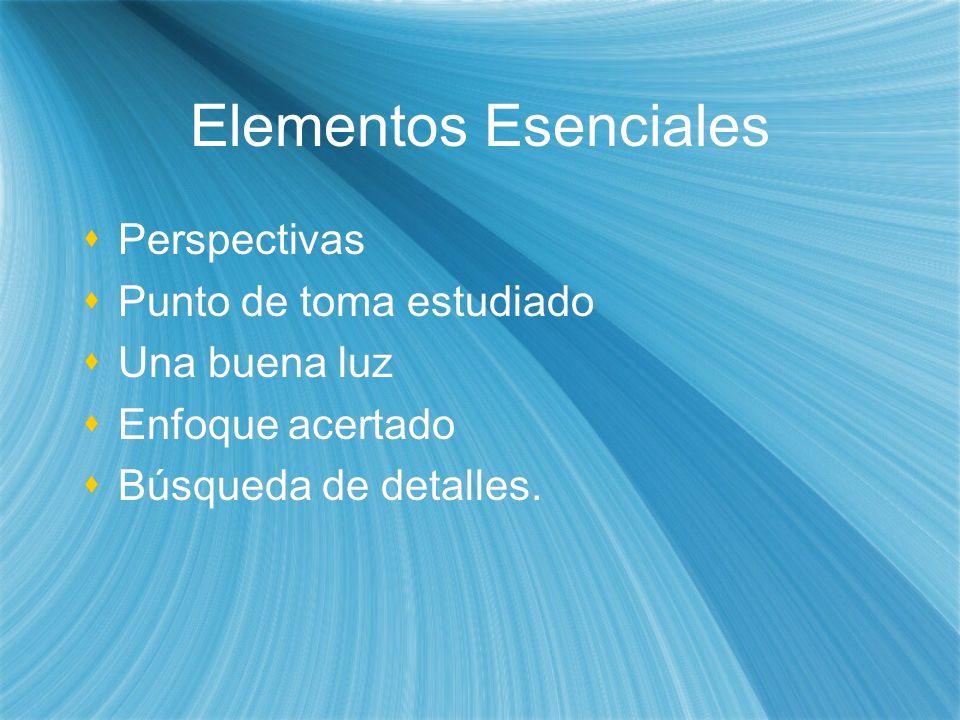 Elementos Esenciales Perspectivas Punto de toma estudiado