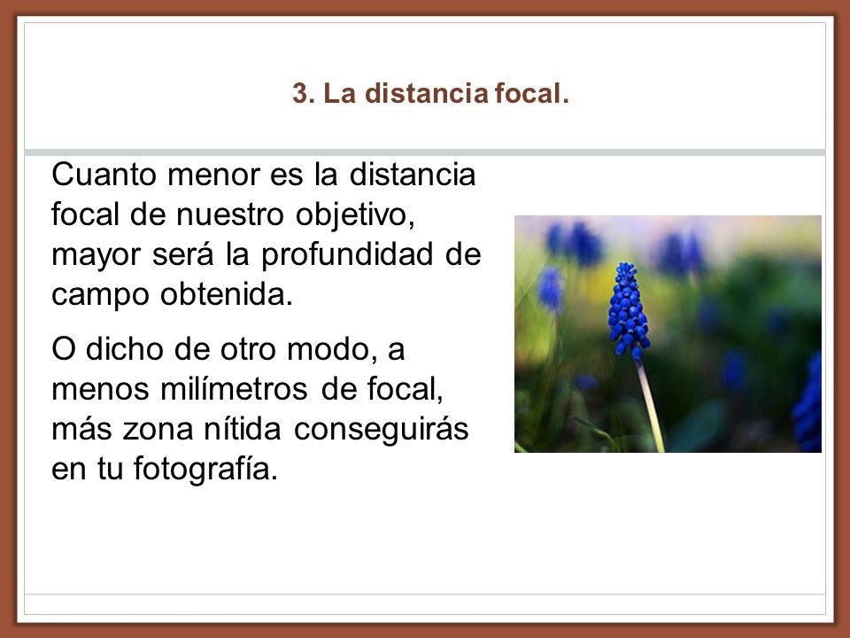 3. La distancia focal.Cuanto menor es la distancia focal de nuestro objetivo, mayor será la profundidad de campo obtenida.