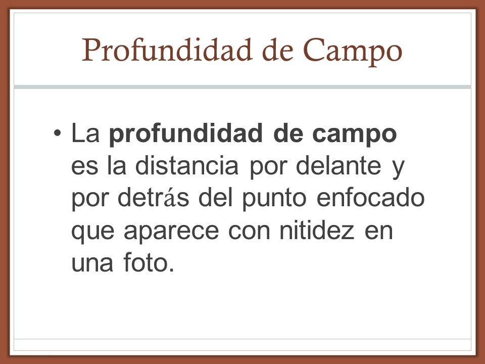 Profundidad de CampoLa profundidad de campo es la distancia por delante y por detrás del punto enfocado que aparece con nitidez en una foto.