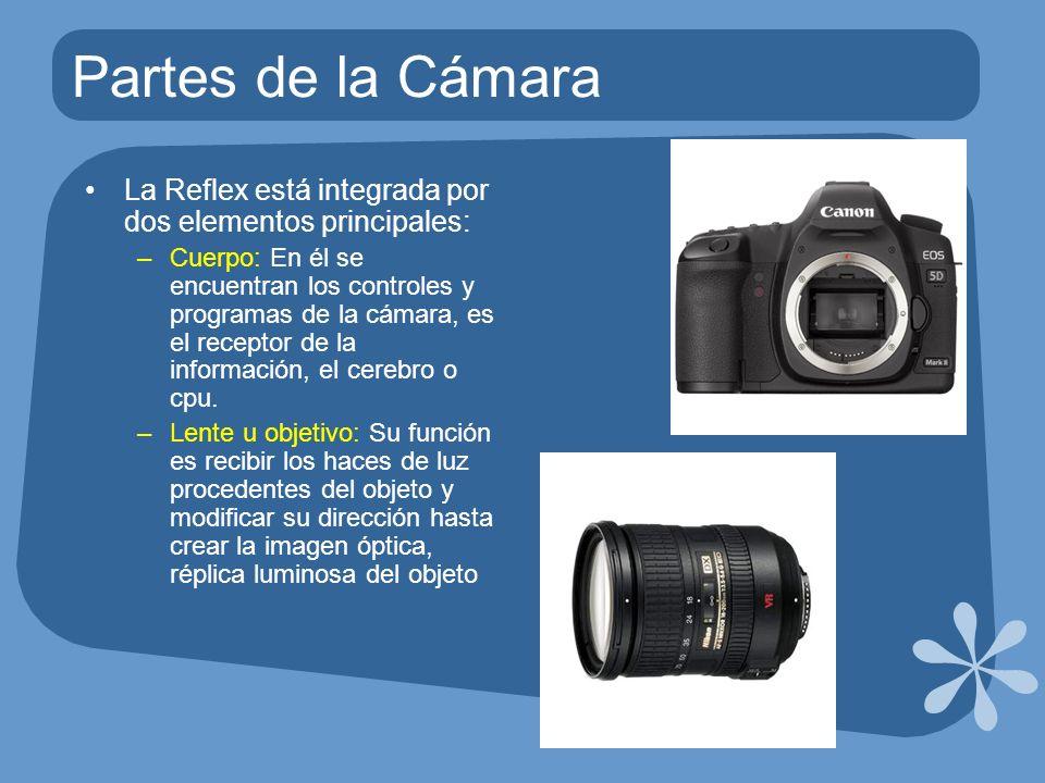 Partes de la Cámara La Reflex está integrada por dos elementos principales:
