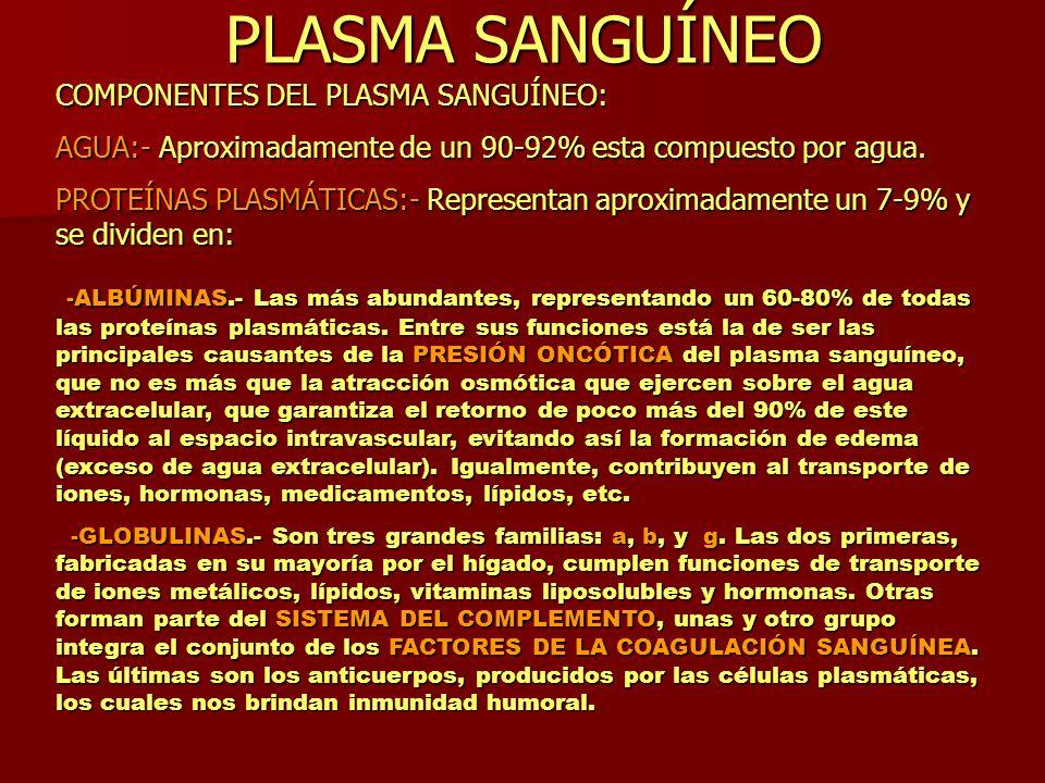 PLASMA SANGUÍNEO COMPONENTES DEL PLASMA SANGUÍNEO: AGUA:- Aproximadamente de un 90-92% esta compuesto por agua.