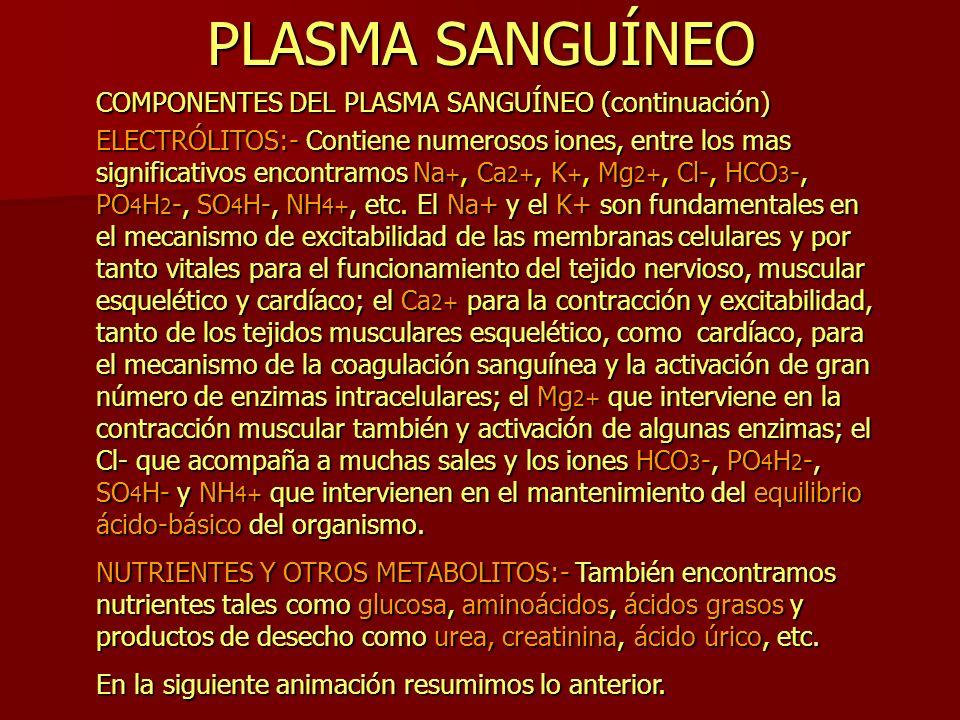 PLASMA SANGUÍNEO COMPONENTES DEL PLASMA SANGUÍNEO (continuación)