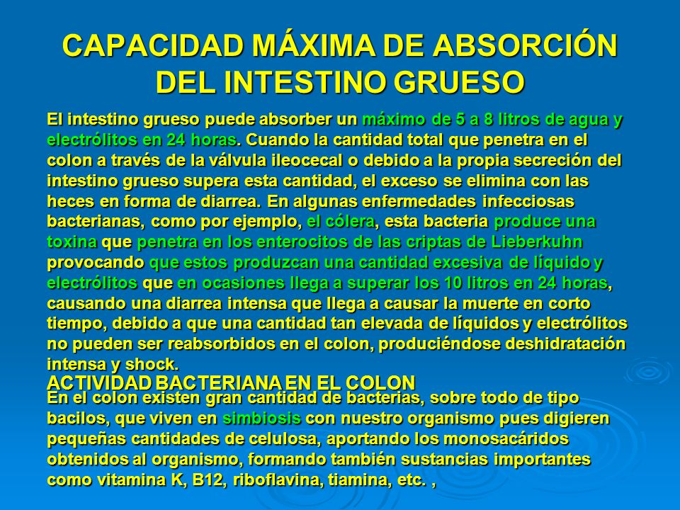 CAPACIDAD MÁXIMA DE ABSORCIÓN DEL INTESTINO GRUESO