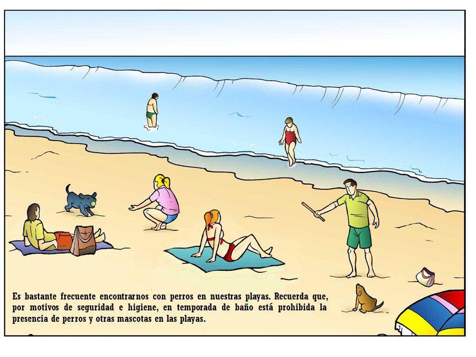 Es bastante frecuente encontrarnos con perros en nuestras playas