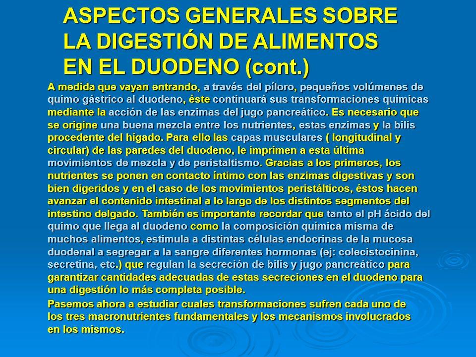 ASPECTOS GENERALES SOBRE LA DIGESTIÓN DE ALIMENTOS EN EL DUODENO (cont