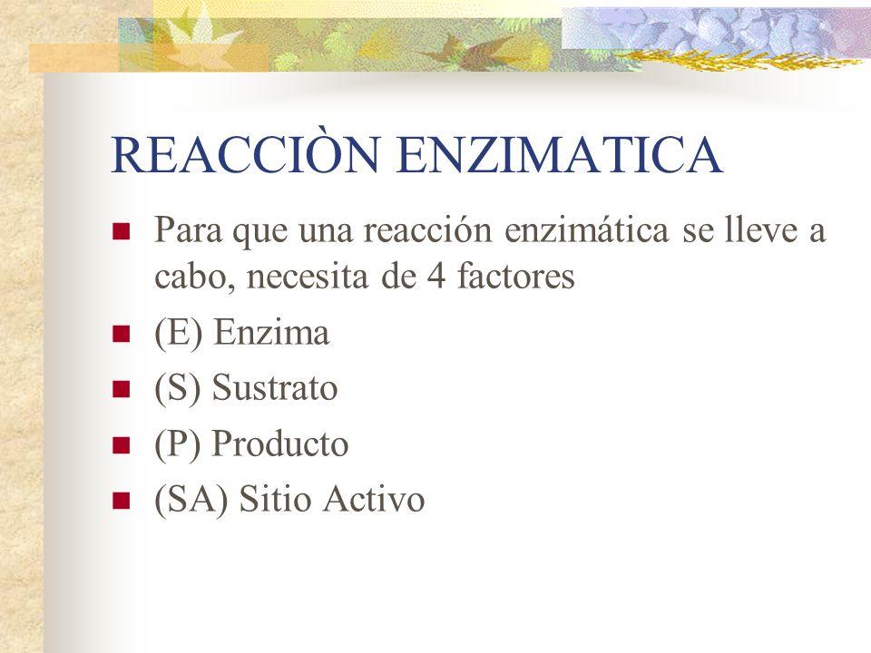 REACCIÒN ENZIMATICA Para que una reacción enzimática se lleve a cabo, necesita de 4 factores. (E) Enzima.