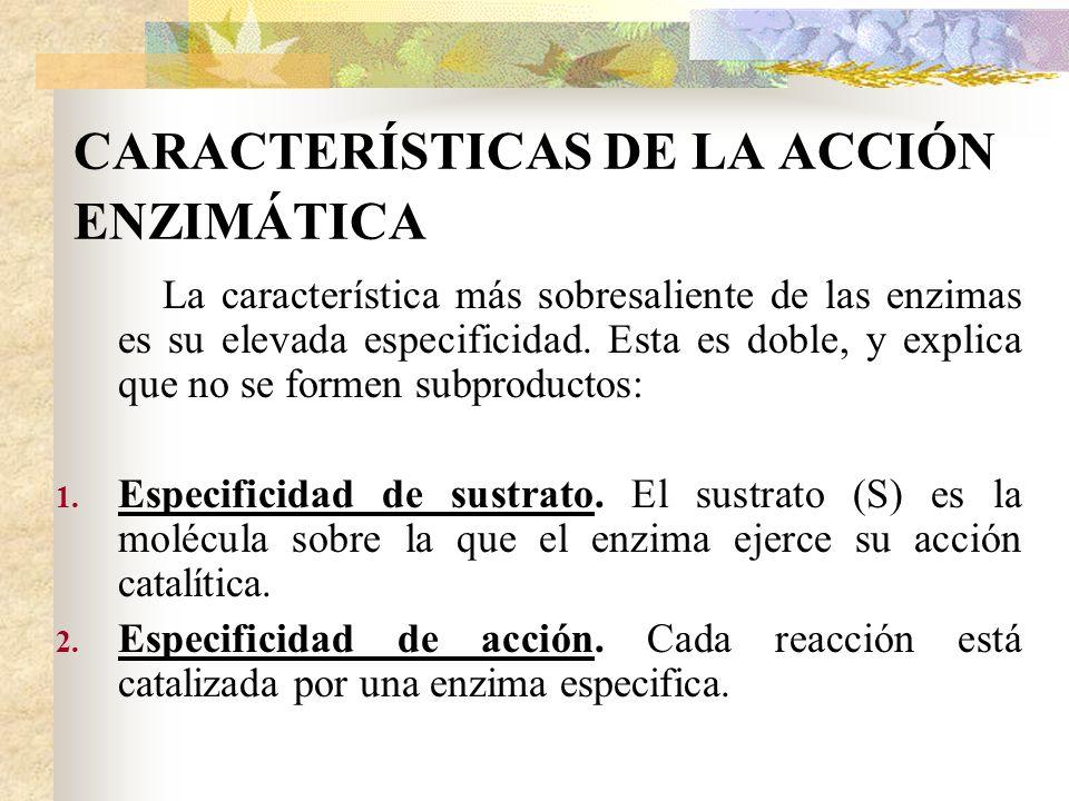CARACTERÍSTICAS DE LA ACCIÓN ENZIMÁTICA