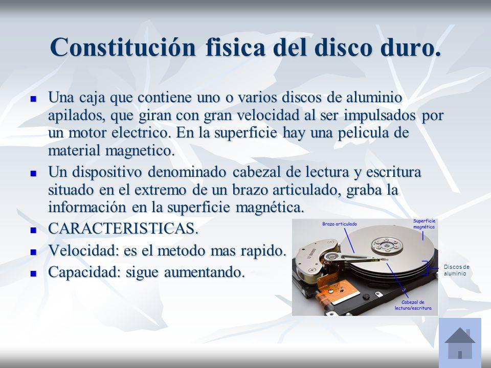 Constitución fisica del disco duro.