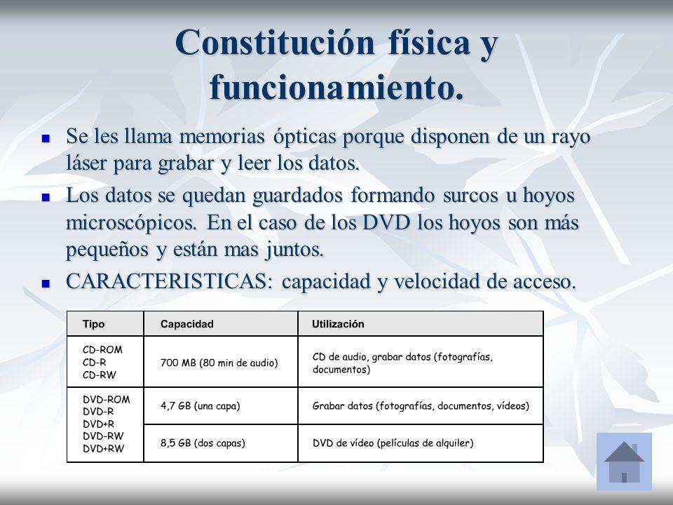 Constitución física y funcionamiento.