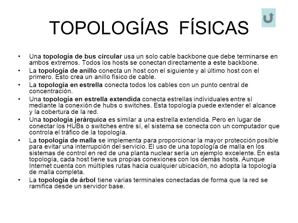 TOPOLOGÍAS FÍSICAS