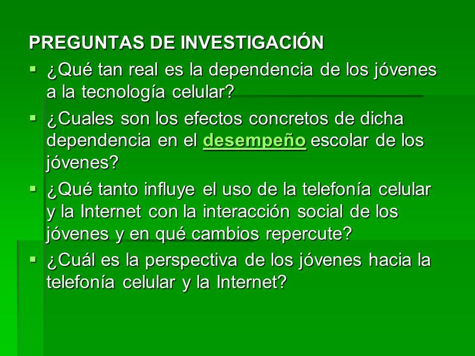 PREGUNTAS DE INVESTIGACIÓN