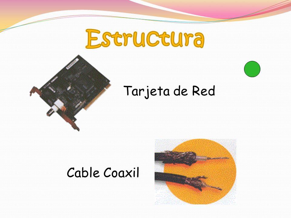 Estructura Tarjeta de Red Cable Coaxil