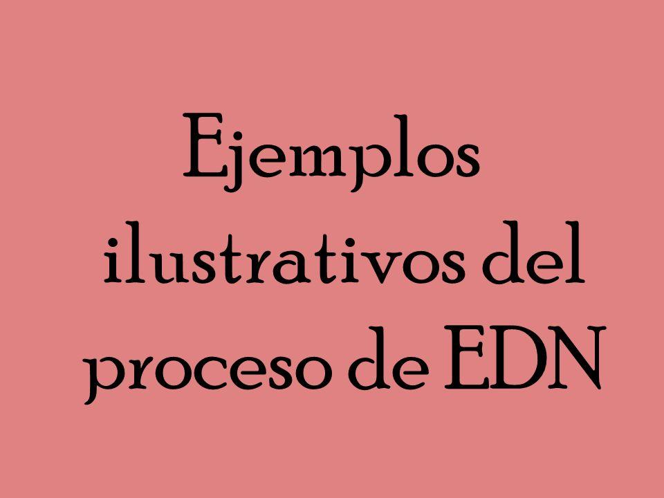 Ejemplos ilustrativos del proceso de EDN