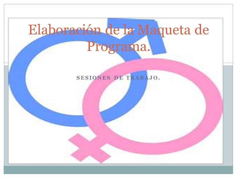 Elaboración de la Maqueta de Programa.