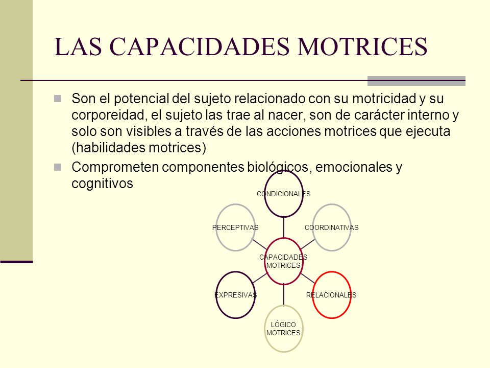 LAS CAPACIDADES MOTRICES