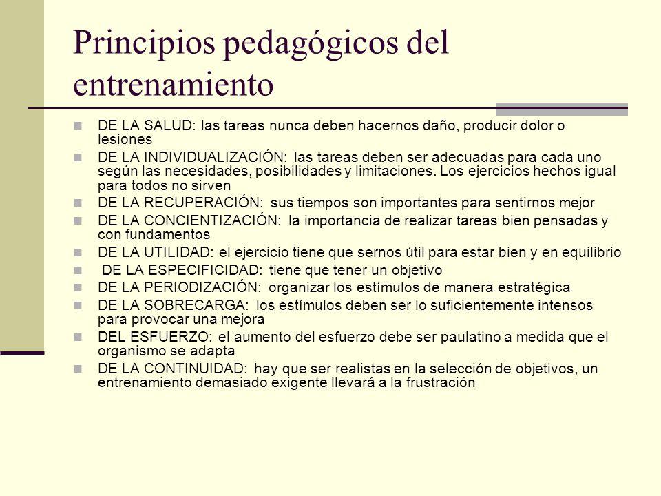 Principios pedagógicos del entrenamiento