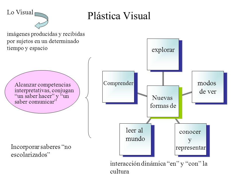 Plástica Visual Lo Visual Incorporar saberes no escolarizados