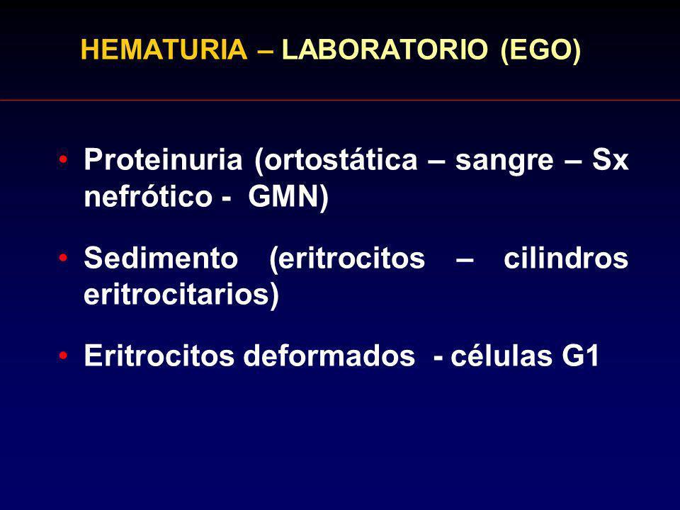 HEMATURIA – LABORATORIO (EGO)