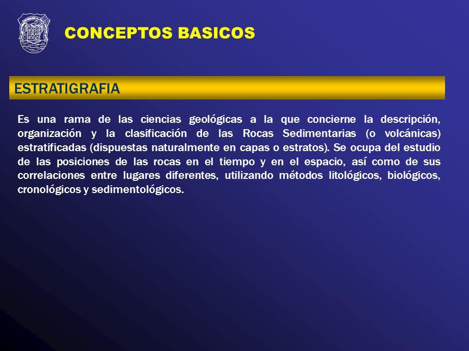CONCEPTOS BASICOS ESTRATIGRAFIA