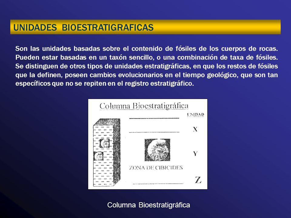 UNIDADES BIOESTRATIGRAFICAS
