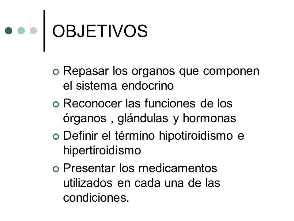 OBJETIVOS Repasar los organos que componen el sistema endocrino