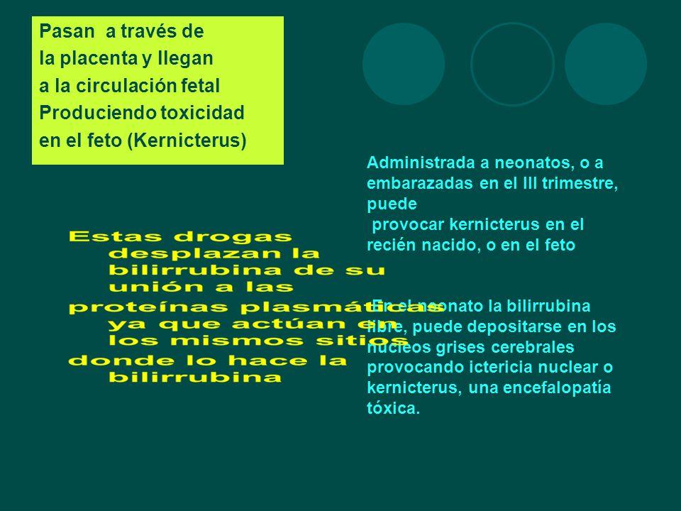 Produciendo toxicidad en el feto (Kernicterus)
