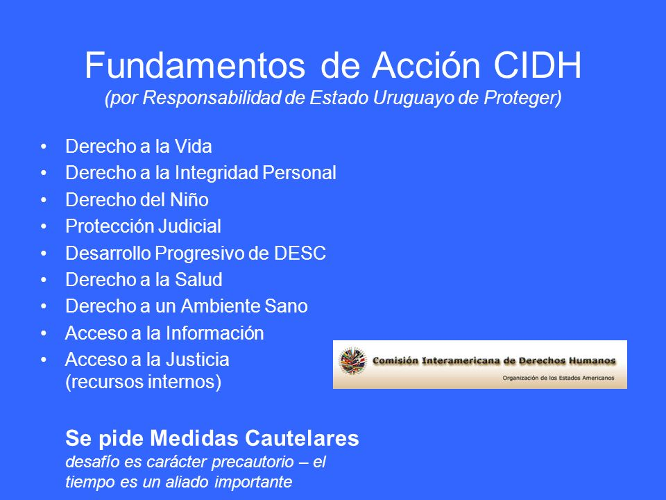 Fundamentos de Acción CIDH (por Responsabilidad de Estado Uruguayo de Proteger)