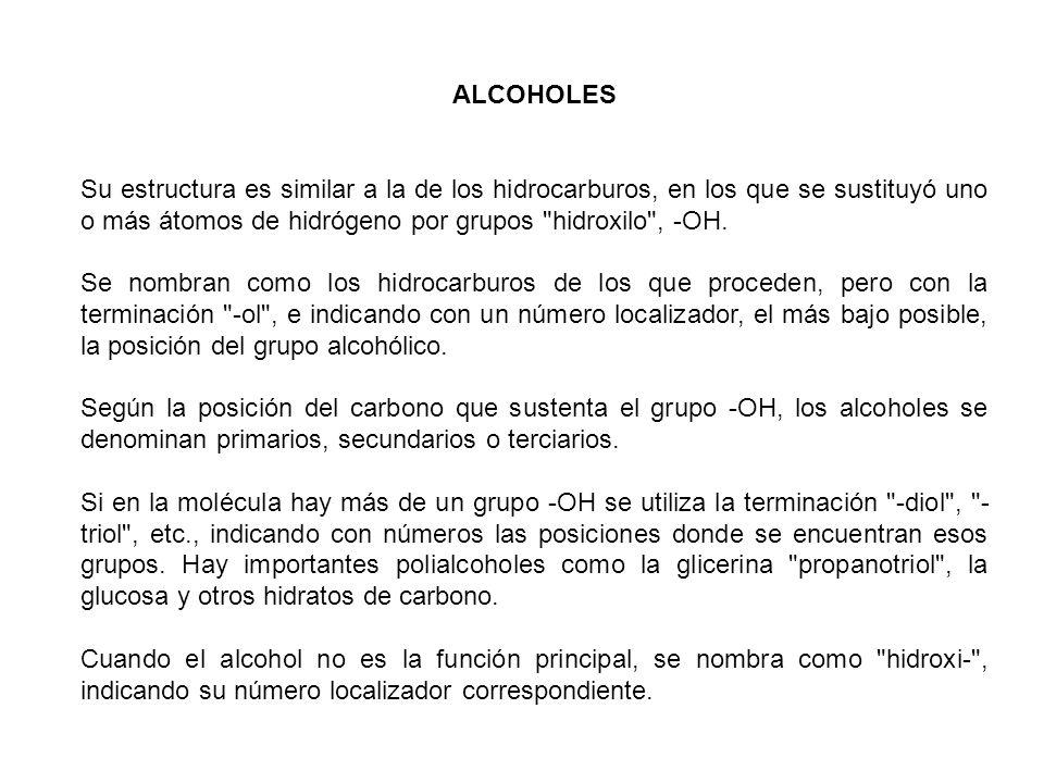 ALCOHOLES Su estructura es similar a la de los hidrocarburos, en los que se sustituyó uno o más átomos de hidrógeno por grupos hidroxilo , -OH.