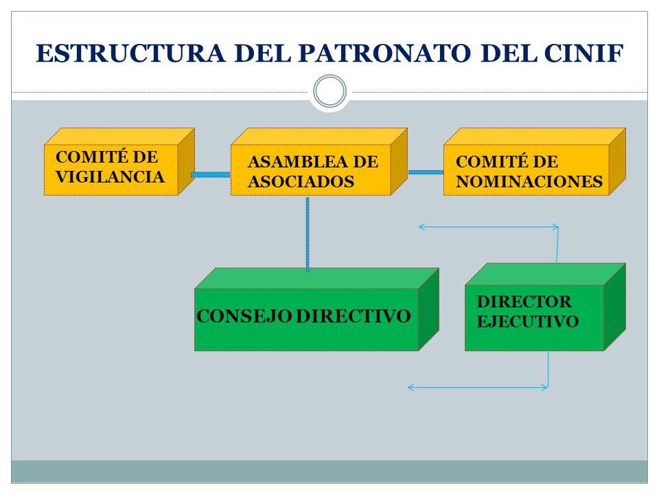 ESTRUCTURA DEL PATRONATO DEL CINIF