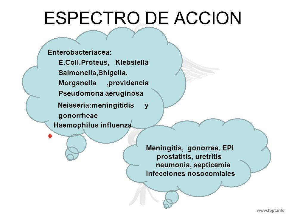 ESPECTRO DE ACCIONEnterobacteriacea: E.Coli,Proteus, Klebsiella Salmonella,Shigella, Morganella ,providencia Pseudomona aeruginosa.