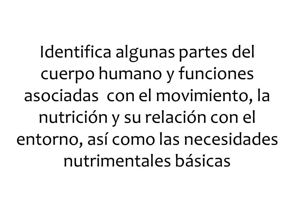 Identifica algunas partes del cuerpo humano y funciones asociadas con el movimiento, la nutrición y su relación con el entorno, así como las necesidades nutrimentales básicas