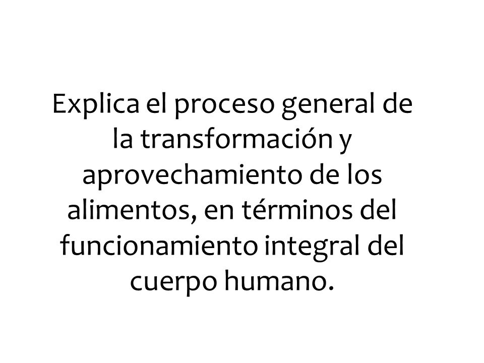 Explica el proceso general de la transformación y aprovechamiento de los alimentos, en términos del funcionamiento integral del cuerpo humano.