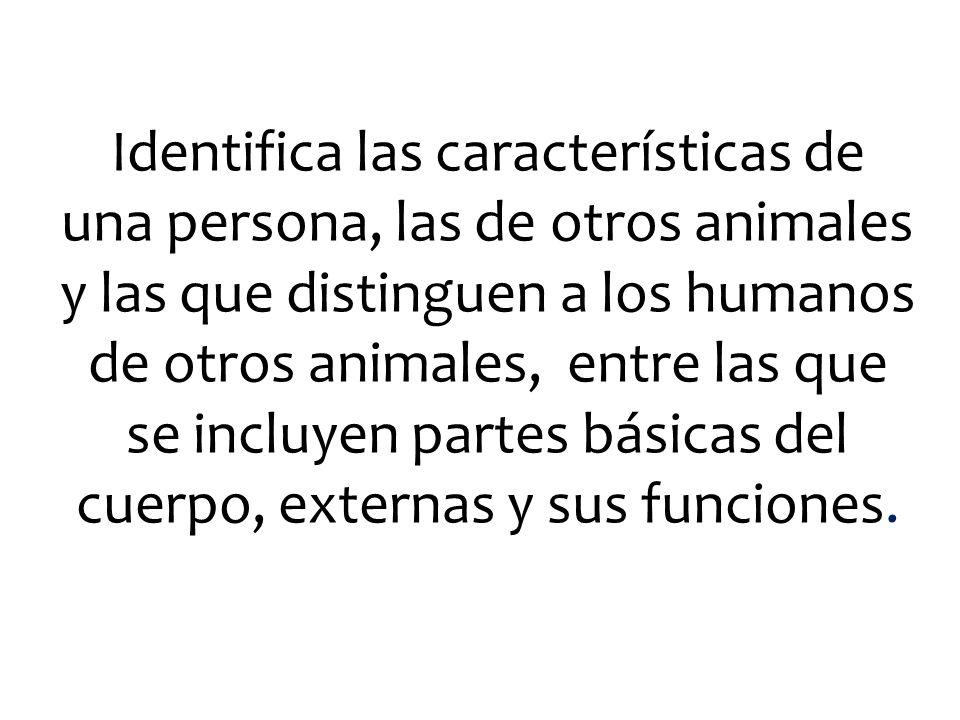 Identifica las características de una persona, las de otros animales y las que distinguen a los humanos de otros animales, entre las que se incluyen partes básicas del cuerpo, externas y sus funciones.