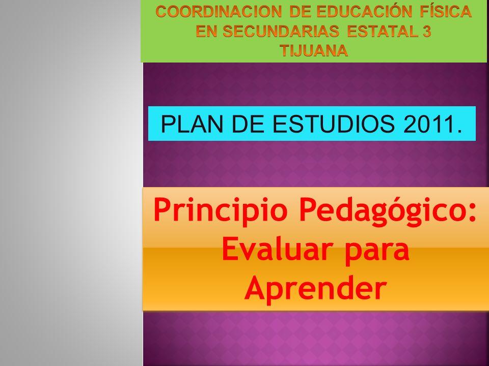 Principio Pedagógico: Evaluar para Aprender