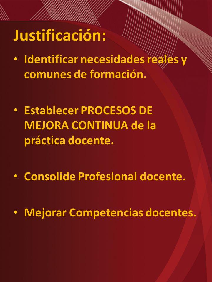 Justificación: Identificar necesidades reales y comunes de formación.