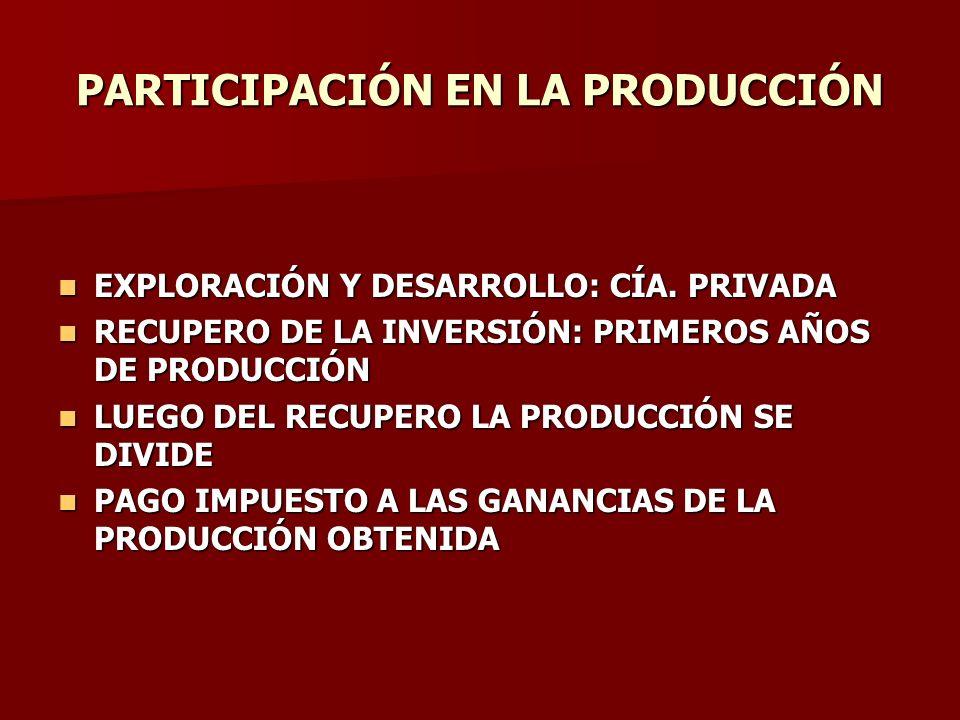 PARTICIPACIÓN EN LA PRODUCCIÓN