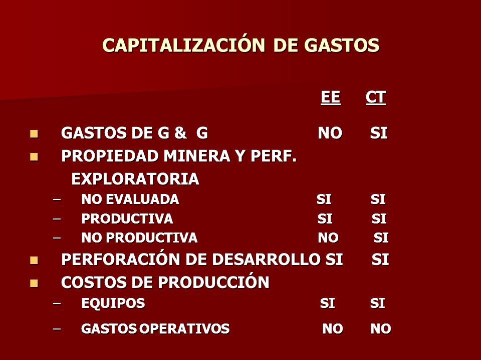 CAPITALIZACIÓN DE GASTOS