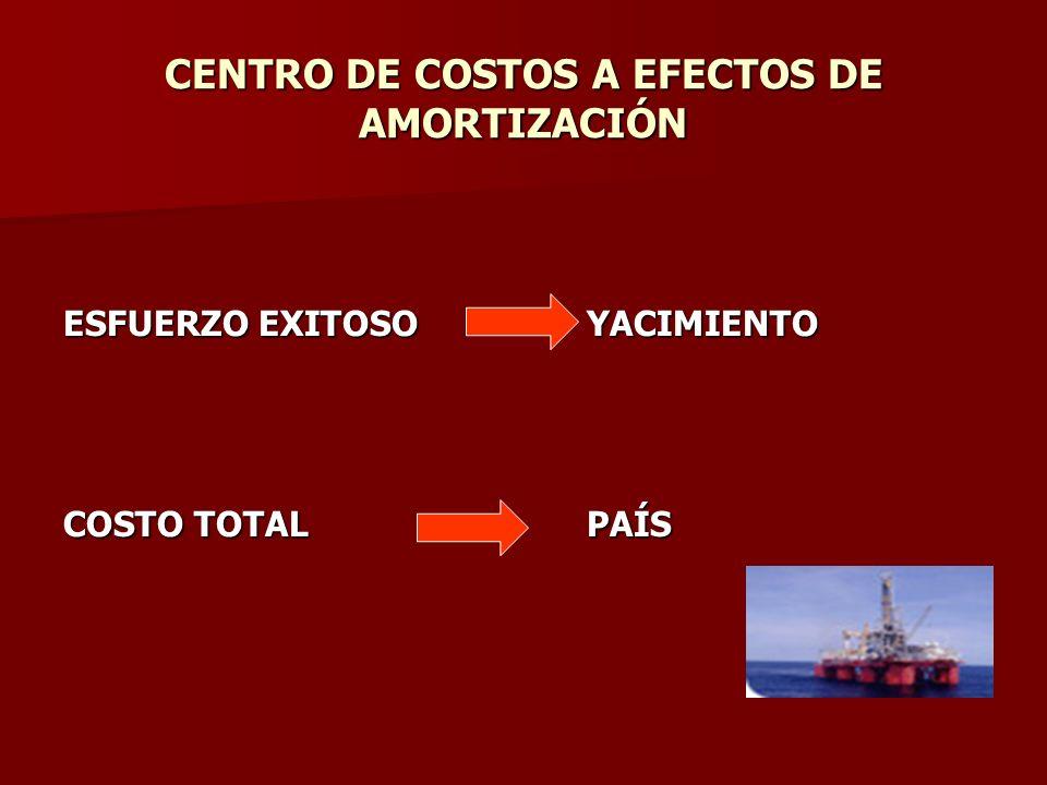 CENTRO DE COSTOS A EFECTOS DE AMORTIZACIÓN