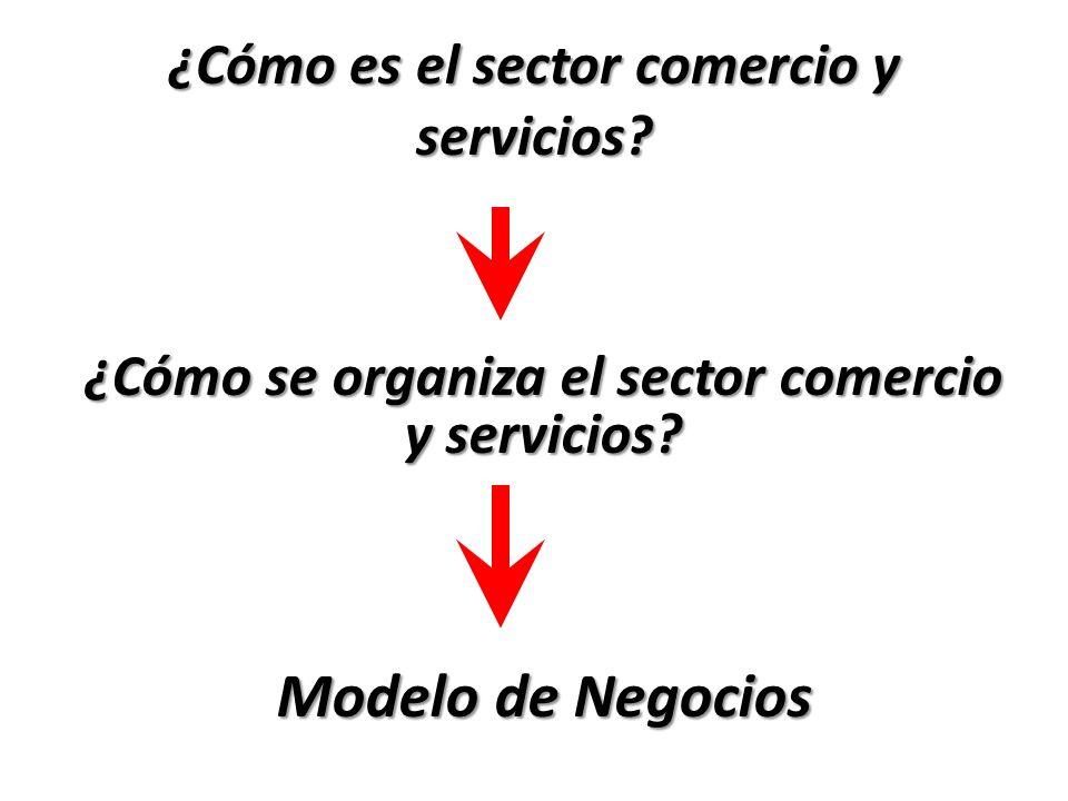 ¿Cómo es el sector comercio y servicios