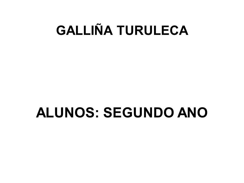 GALLIÑA TURULECA ALUNOS: SEGUNDO ANO