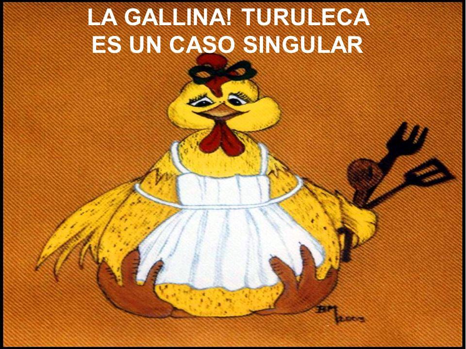 LA GALLINA! TURULECA ES UN CASO SINGULAR