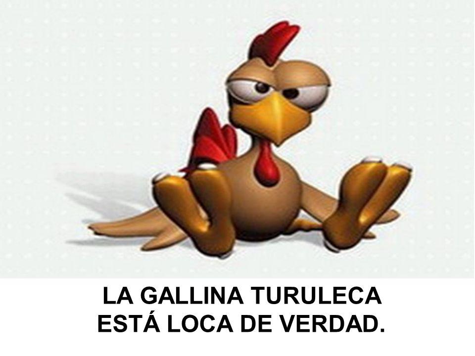 LA GALLINA TURULECA ESTÁ LOCA DE VERDAD.