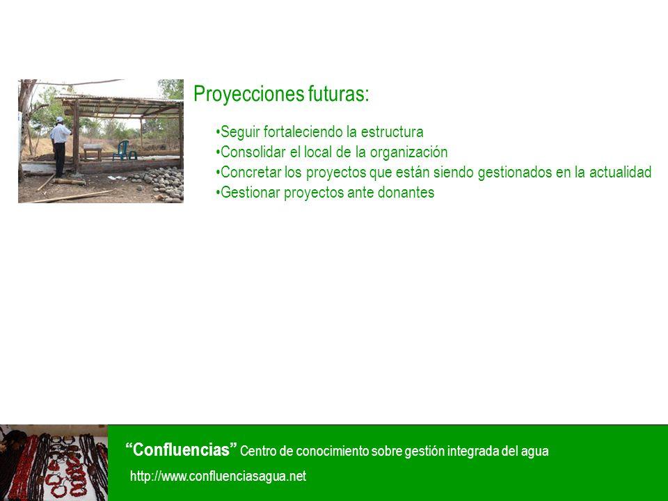 Proyecciones futuras: