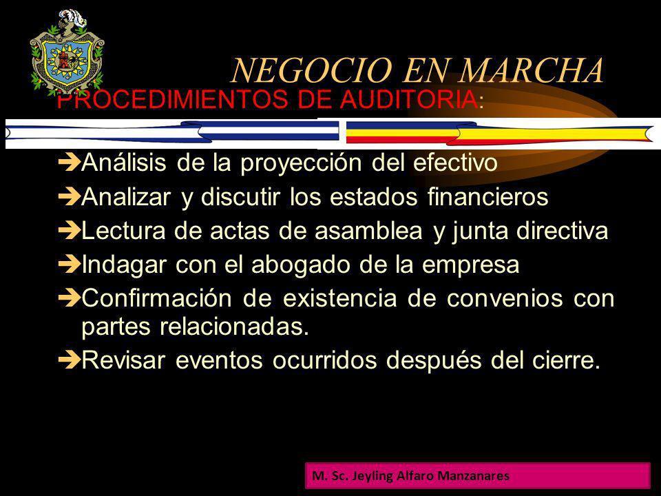 NEGOCIO EN MARCHA PROCEDIMIENTOS DE AUDITORIA: