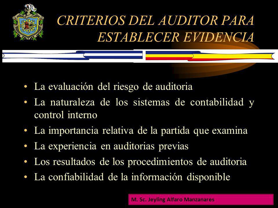 CRITERIOS DEL AUDITOR PARA ESTABLECER EVIDENCIA