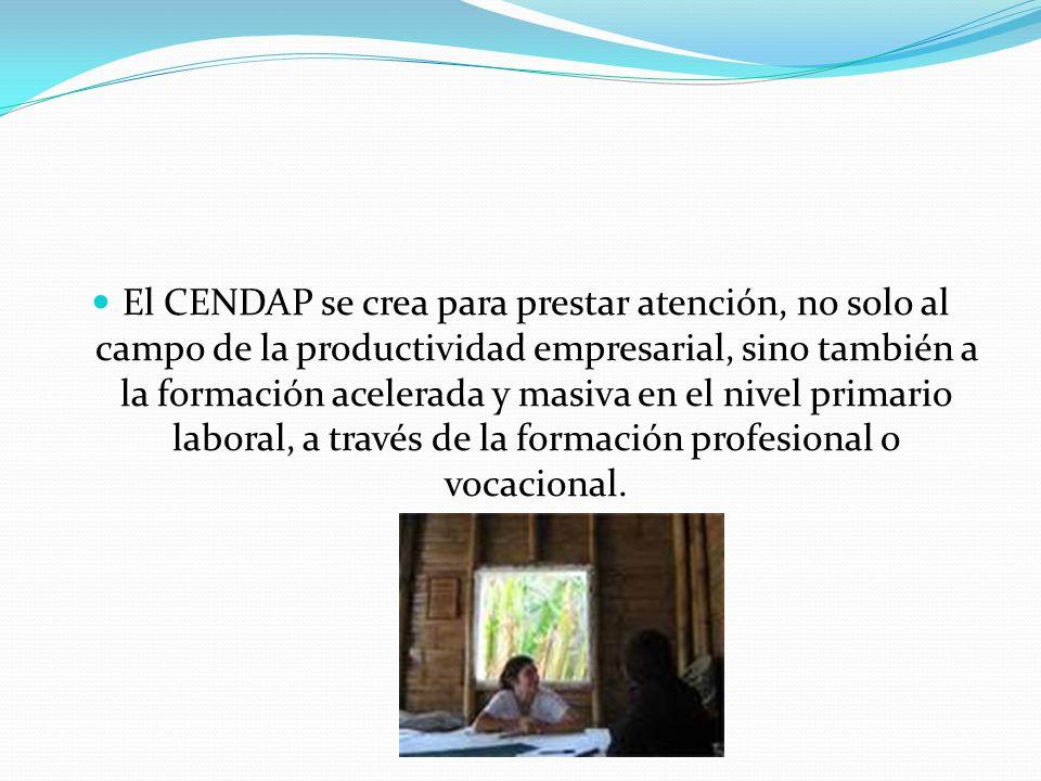 El CENDAP se crea para prestar atención, no solo al campo de la productividad empresarial, sino también a la formación acelerada y masiva en el nivel primario laboral, a través de la formación profesional o vocacional.