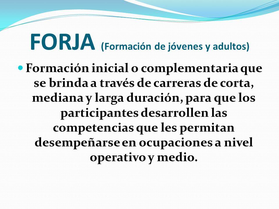 FORJA (Formación de jóvenes y adultos)