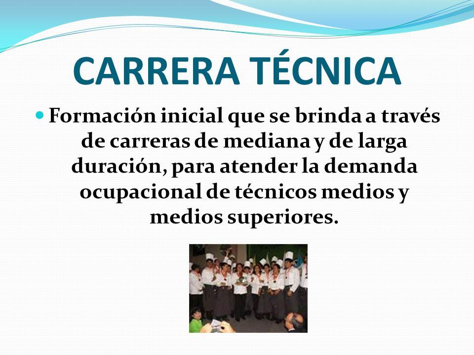 CARRERA TÉCNICA