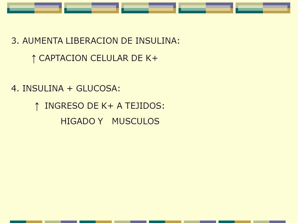 3. AUMENTA LIBERACION DE INSULINA: