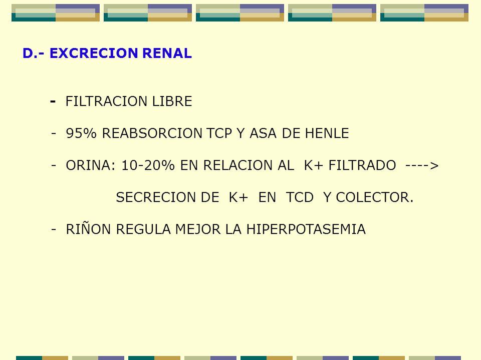 D.- EXCRECION RENAL - FILTRACION LIBRE. - 95% REABSORCION TCP Y ASA DE HENLE. - ORINA: 10-20% EN RELACION AL K+ FILTRADO ---->
